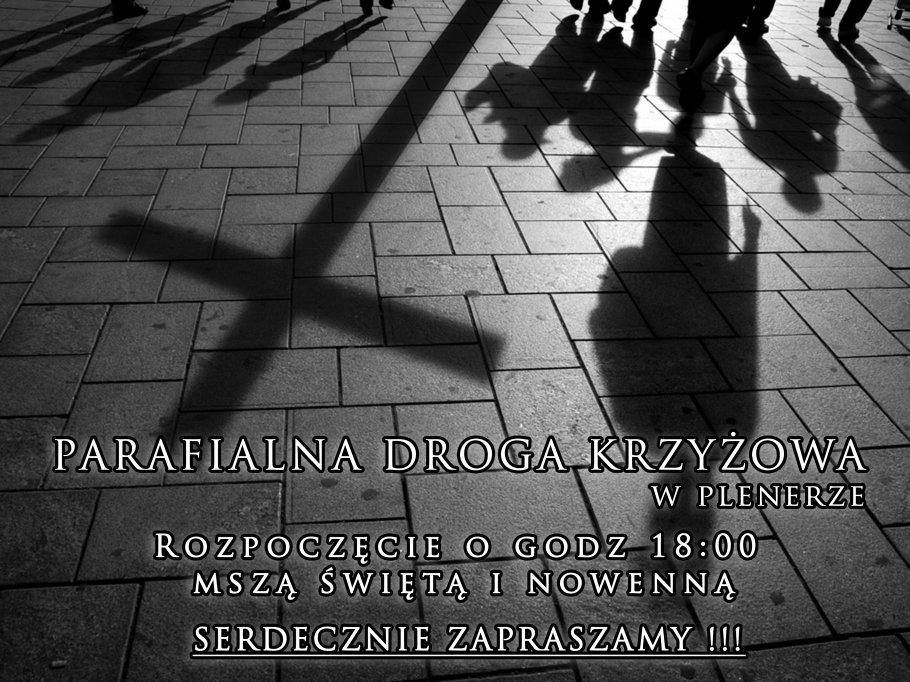 DK ulicami Ropy (1)